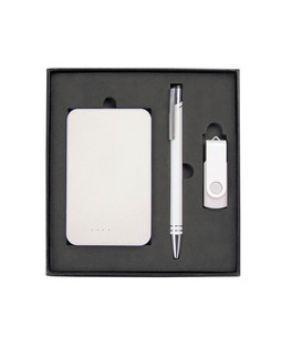 Gift Set with Charger, 8Gb Lacquered Rotate Flash Drive & Hawk Pen